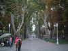 2006_0928_214124aa
