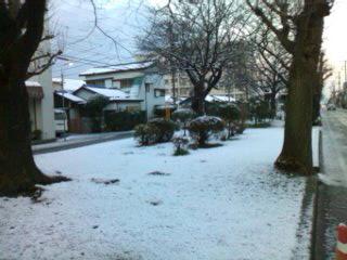 雪が降った翌朝